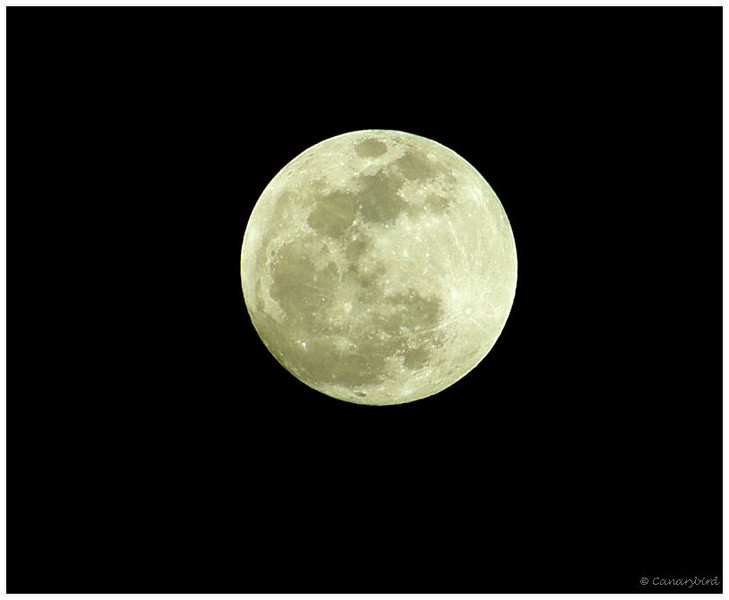 Brightest Moon of 2010