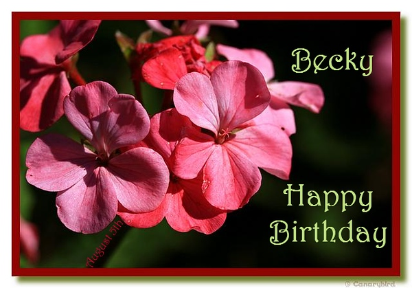 Happy birthday becky booberry85 altavistaventures Images
